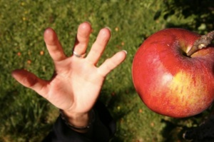 iStock reaching for the apple Small